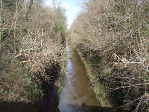 Above Woodseaves Cutting